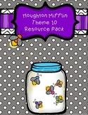 Houghton Mifflin First Grade Theme 10 Resource Pack