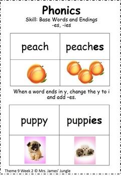 Houghton Mifflin Focus Wall Theme 9 First Grade