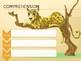 Houghton Mifflin Harcourt How Leopard Got His Spots Grade 1