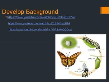 Houghton Mifflin Harcourt Journeys 1st grade A Butterfly Grows Power Point