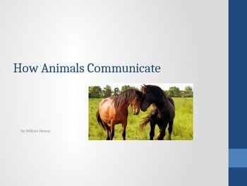 Houghton Mifflin Harcourt Journeys 1st grade How Animals Communicate