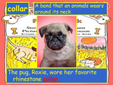 Journeys 2014 Grade 2 Henry and Mudge PowerPoint