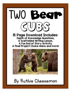 Houghton Mifflin Journeys: Two Bear Cubs
