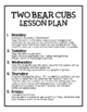 Houghton Mifflin Journeys: Two Bear Cubs