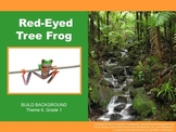 Houghton Mifflin Reading, Grade 1, Red-Eyed Tree Frog Comm