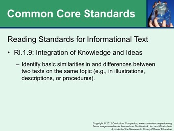 Houghton Mifflin Reading Grade 1 Theme 10 All Resources Common Core Standards