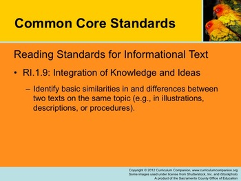 Houghton Mifflin Reading Grade 1 Theme 4 All Resources Common Core Standards