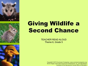 Houghton Mifflin Reading Grade 5 Giving Wildlife ... Commo