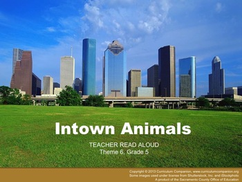 Houghton Mifflin Reading Grade 5 Intown Animals Common Core Standards