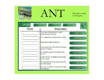 Houghton Mifflin Second Grade Reading Theme 4 Interactive Vocabulary