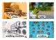 House Flashcards with Vocabulary