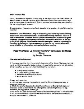 House On Mango Street: Assessment STAAR