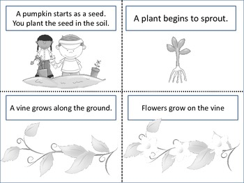 """ESL Resource and Activity: """"How A Pumpkin Grows"""""""