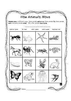 how animals move by just jan teachers pay teachers. Black Bedroom Furniture Sets. Home Design Ideas