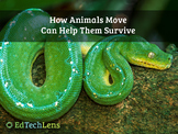 How Animals Move Can Help Them Survive PDF