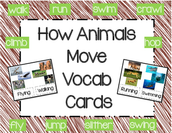 How Animals Move Vocabulary Cards