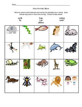 how animals move worksheet by kathy chandler teachers pay teachers. Black Bedroom Furniture Sets. Home Design Ideas