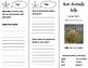 How Animals Talk Trifold - Storytown 3rd Grade Unit 2 Week 3