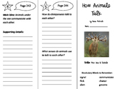 How Animals Talk Trifold - Storytown 3rd Grade Unit 2 Week 3