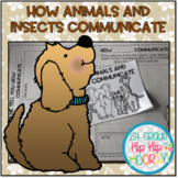 How Animals and Insects Communicate