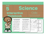 Cells-How Are Cells,  Tissues, Organs, Organ Systems and O
