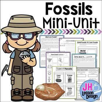 Fossils Mini-Unit