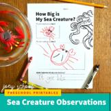 How Big is My Sea Creature Worksheet, Science, Pre-k-2nd,