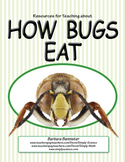 How Bugs Eat: Mouth Parts