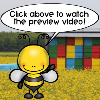 How Can I Help Honey Bees?