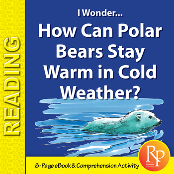 How Can Polar Bears Stay Warm in Cold Weather? - Digital S