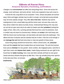 How Changing Ecosystems Affect Populations of Living Things - Grade 3 NGSS