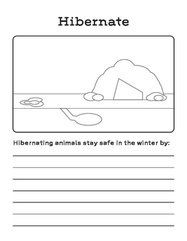 How Do Animals Stay Safe in the Winter: Migration, Hibernation, Adaptation