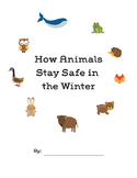 How Do Animals Stay Safe in the Winter: Migration, Hiberna