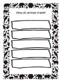 How Do Animals Travel
