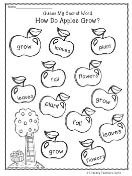 How Do Apples Grow: CCSS Aligned Leveled Reading Passages and Activities