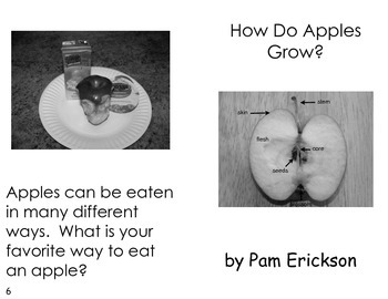 How Do Apples Grow?- a non-fiction guided reading book