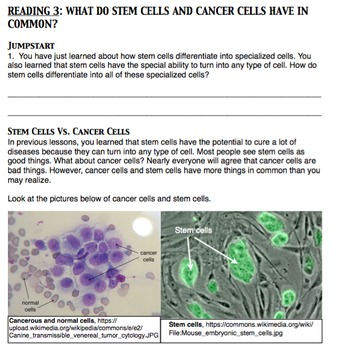 How Do Cells Become Cancerous?