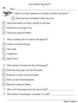 How Do Ducks Stay Warm? Nonfiction Passage & Printable