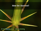 How Do I Survive? - 5E Classroom Science Activity PDF