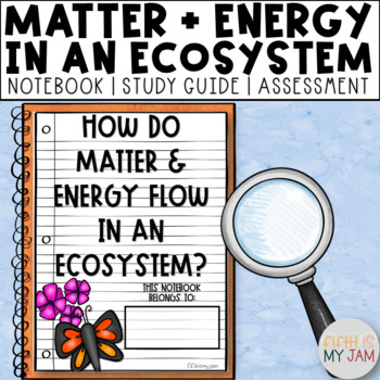 5th Grade NGSS // How Do Matter and Energy Move Within an Ecosystem?