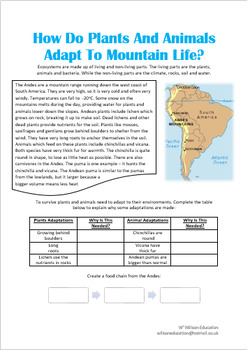 How Do Plants And Animals Adpat To Mountain Life?