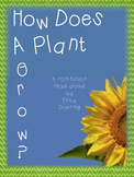 How Do  Plants Grow?  A non-fiction read aloud