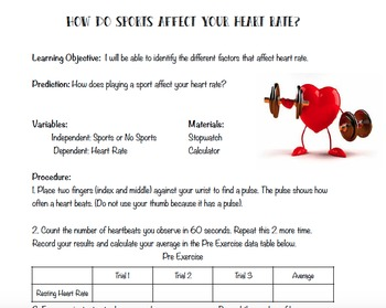 How Do Sports Affect Heart Rate?