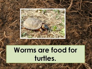 How Do Worms Help? Easy to Read Powerpoint Show