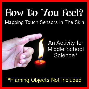 Human Body (Nervous System) - Skin and the Sense of Touch