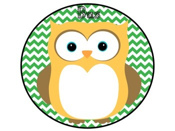 How Do You Get Home Owls Green and Pink Chevron