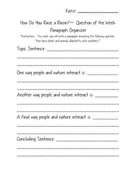 How Do You Raise a Raisin? - Reading Street 3.3.1 Packet