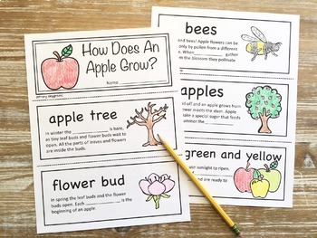 How Does An Apple Grow?  ~ Fill in the Blank Book