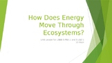 How Does Energy Move Through Ecosystems? (Unit 1, Part 2)
