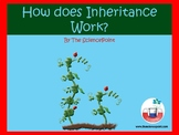 How Does Inheritance Work?